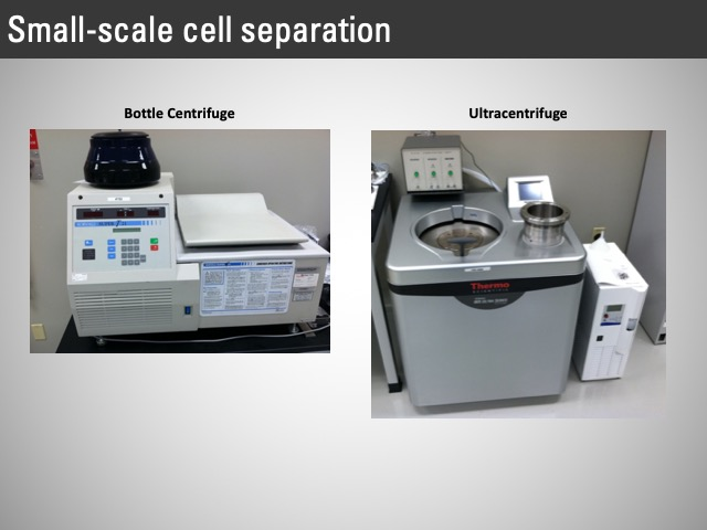 small-scale cell separation